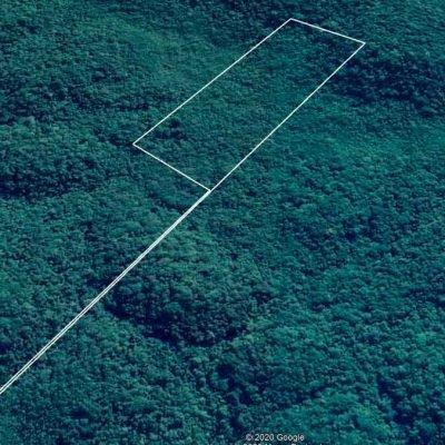 Compensação Ambiental Por M2 –  Reserva Bioma Mata Atlantica – SP